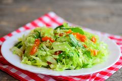Easy vegetarian avocado coleslaw. Home coleslaw salad with fresh avocado slices, dried apricots, green arugula and sesame seeds. Diet meal plan to lose weight Stock Image