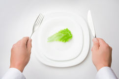 Eat less! Royalty Free Stock Image