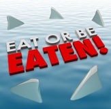Eat or Be Eaten Sharks Fins Swimming Fierce Deadly Competition. Eat or Be Eaten words on water surface with shark fins swimming around you to illustrate deadly Stock Photo