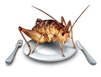 Eat Bugs Exotic Food Concept. Eat bugs and eating insects as exotic cuisine and alternative high protein nutrition food as a cricket insect in a plate with knife Stock Photos