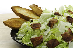 Eat caesar salad Stock Image