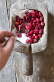 Eat healthy or diet idea, strawberry Royalty Free Stock Photography