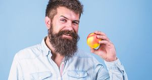 Eat healthy. Man with beard hipster hold apple fruit hand. Nutrition facts and health benefits. Apples popular fruit in stock photography