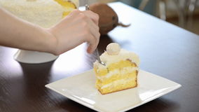 Eat Sliced delicious cake stock video