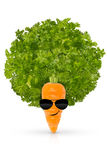 Eat your organic vegetables and be cool royalty free stock images