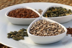 Eatable seeds Royalty Free Stock Image