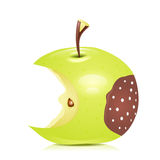 Eated rotten apple. Vector illustration Royalty Free Stock Photography