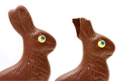 Eaten bunny stock photography