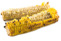 Eaten Corn Stock Images