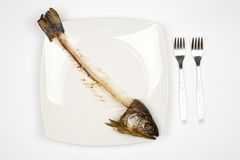 Eaten fish Royalty Free Stock Photos