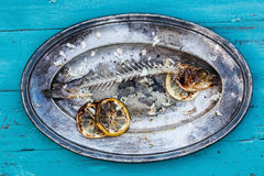 Eaten fish on a plate Royalty Free Stock Image