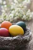 Eater eggs Royalty Free Stock Images