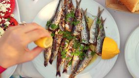 Eating appetizing sardines dish served with parsley and lemon