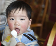 Eating baby. The eating baby is very interesting Royalty Free Stock Photo