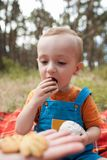 Eating baby nature picnic concept. Delicious food at the fresh air Royalty Free Stock Photos