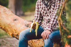 Free Eating Banana Outdoors Hiking Trail. Theme Hiking And Nature Travel. Tourist Take A Rest And Eating Babanas. Picnic In The Forest Royalty Free Stock Photography - 168573467
