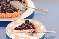 Eating Blueberry Cheesecake Stock Photography