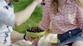 Eating cherries on a picnic. Couple of young man and woman eating cherries on a picnic, man feeds his girlfriend stock video