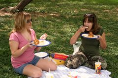Eating Chicken. Two girls in the park eating a chicken lunch Royalty Free Stock Photo