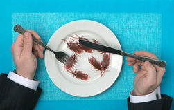 Eating of cockroaches. On a background Royalty Free Stock Photography