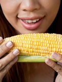 Eating Corn Stock Photography