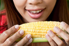 Eating Corn Royalty Free Stock Photo