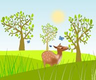 Eating Deer. A deer standing and eating of a tree in a meadow Royalty Free Stock Photos