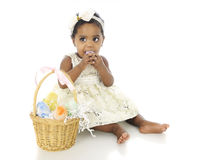 Eating Easter Eggs. An adorable baby girl all dressed up with an Easter basket by her side.  She's attempting to eat one of the colored eggs.  On a white Stock Photos