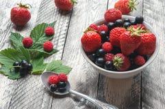 Eating fresh summer berries. Stock Photos