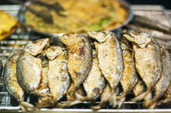 Eating healthy food: mackerel Stock Images