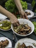 Women hand bbq, eating healthy fresh salad and barbecue meat at outdoor barbecue garden party gathering, selective focus. Eating healthy fresh salad and barbecue royalty free stock images