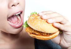 Eating Junk food Stock Image