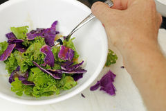 Eating Kale Cabbage Salad Stock Photos