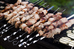 Eating kebabs on the grill Royalty Free Stock Photo