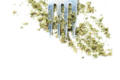 Eating Marijuana, Medical and Recreational Drug Industry in America Royalty Free Stock Images