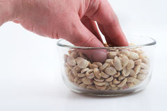 Eating Peanuts. Eating dry roasted peanuts from a bowl Royalty Free Stock Photography