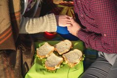 Eating on a picnic young couple who holds hands. Sandwiches - the concept of healthy and natural food royalty free stock photography