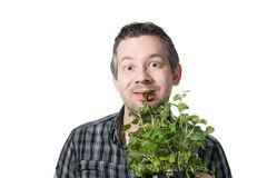 Eating a plant Royalty Free Stock Photography