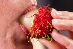 Eating a rambutan Stock Photo