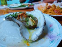 Eating raw oysters. With lemon, garlic, herbs and chilli burn royalty free stock photography