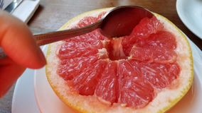 Eating red grapefruit closeup royalty free stock photos