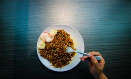 Spicy Javanese fried noodles are typical of Indonesia with crackers. royalty free stock photo