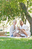 Eating Sandwiches During A Picnic Stock Photos