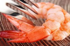 Eating shrimps Royalty Free Stock Photos