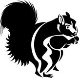 Eating squirrel abstract. Line art one side lighting effect eating squirrel clip art black and white image on isolated white background Royalty Free Stock Image