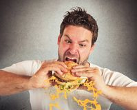Eating with violent impetuosity. Man eating a sandwich with violent impetuosity Stock Images