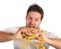 Eating with violent impetuosity Royalty Free Stock Images