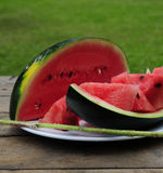 Eating watermelon outside Royalty Free Stock Images