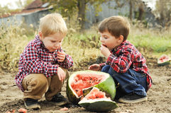 Farm boys eating watermelon. Two young boys eat a watermelon in a melon patch on a farm. Barn in the background royalty free stock photography