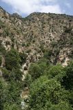 Eaton Canyon Stock Images